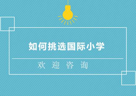 北京學校新聞-如何挑選國際小學