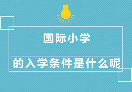 北京學校新聞-國際小學的入學條件是什么呢
