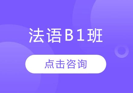 法語B1班