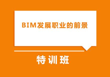 BIM发展职业的前景如何?