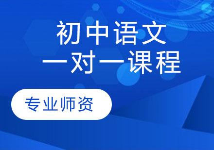 天津初中輔導培訓-初中語文一對一課程