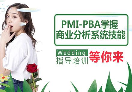 天津PMI-PBA掌握商業分析系統技能