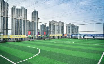 上海五星體育_足球場