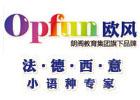 重慶法語培訓機構-重慶歐風小語種